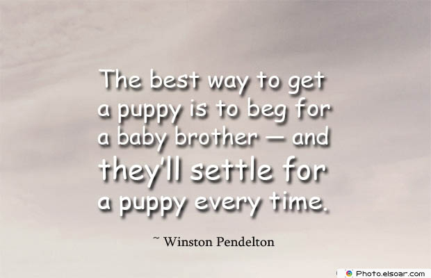 Quotes About Brothers , The best way to get a puppy