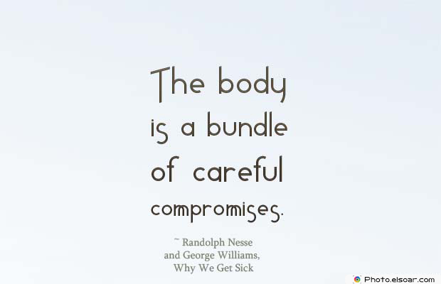 Body Quotes , Quotes About Body , The body is a bundle