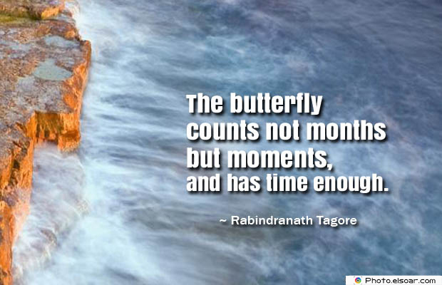 Butterflies Quotes , The butterfly counts not months