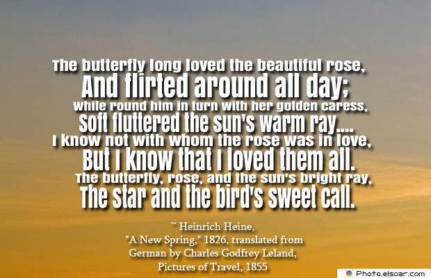 Butterflies Quotes , The butterfly long loved the beautiful rose