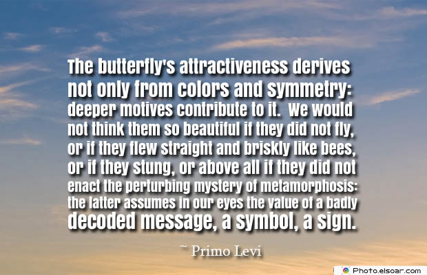 Butterflies Quotes , The butterfly's attractiveness derives