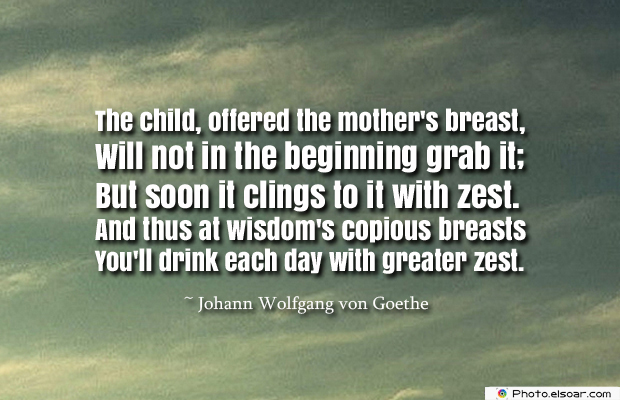 Breastfeeding Quotes , The child, offered the