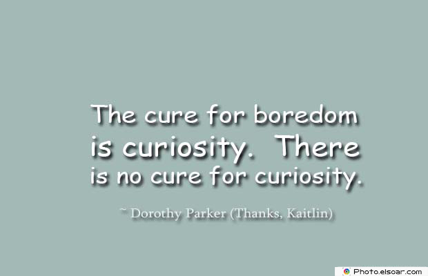 Short Quotes , The cure for boredom is curiosity