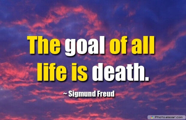 Sigmund Freud, Death Quotes, Death Sayings, Quotes Images, Quotes About Death