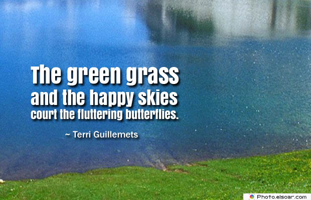 Butterflies Quotes , The green grass and the happy skies