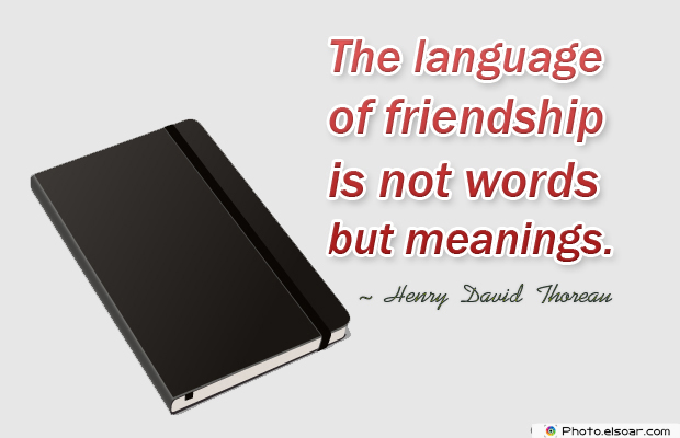 Best Friends Forever , The language of friendship is not words