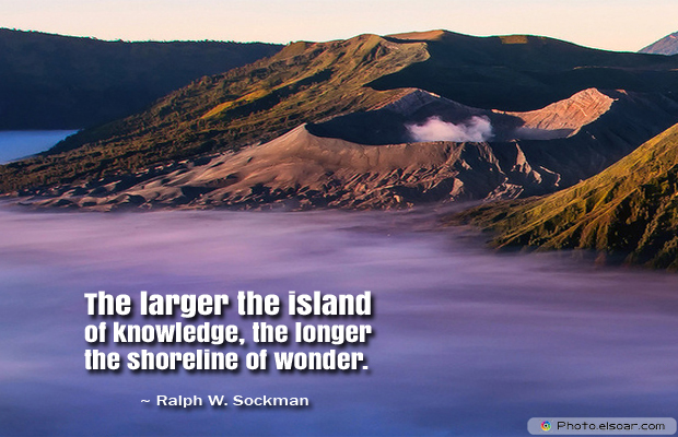 Back to School Quotes , The larger the island of knowledge, the longer the