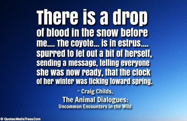 There is a drop of blood