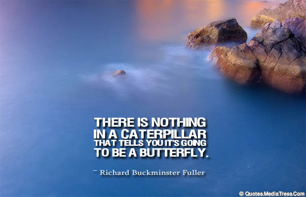 Butterflies Quotes , There is nothing in a caterpillar
