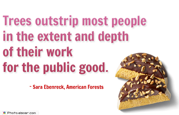 Short Strong Quotes , Trees outstrip most people in the extent and depth