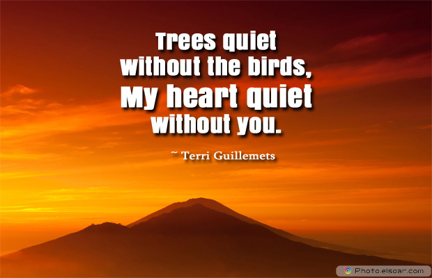 Short Strong Quotes , Trees quiet without the birds