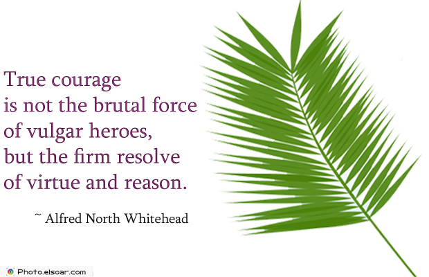Short Quotes , True courage is not the brutal force of vulgar heroes, but the firm