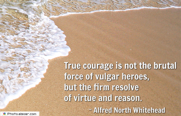 Short Quotes , True courage is not the brutal force of vulgar heroes