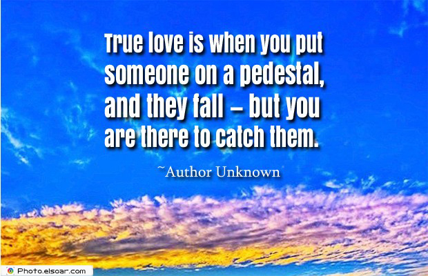 Short Quotes , True love is when you put someone