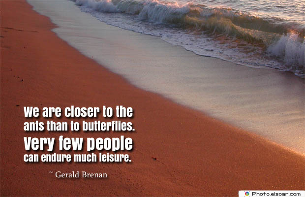 Butterflies Quotes , We are closer to the ants