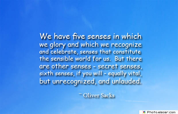 Quotes About Chakras , We have five senses in which we glory and