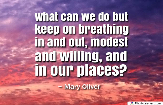 Breathing Quotes , What can we do but keep