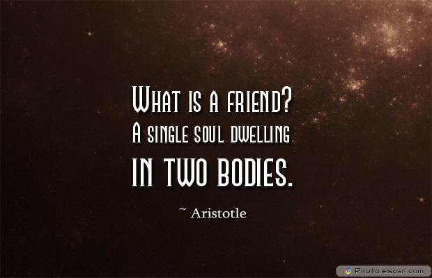 Best Friends Forever , What is a friendA single soul