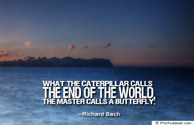 Butterflies Quotes , What the caterpillar calls the end of the world