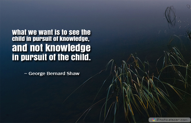 Back to School Quotes , What we want is to see the child in pursuit of knowledge