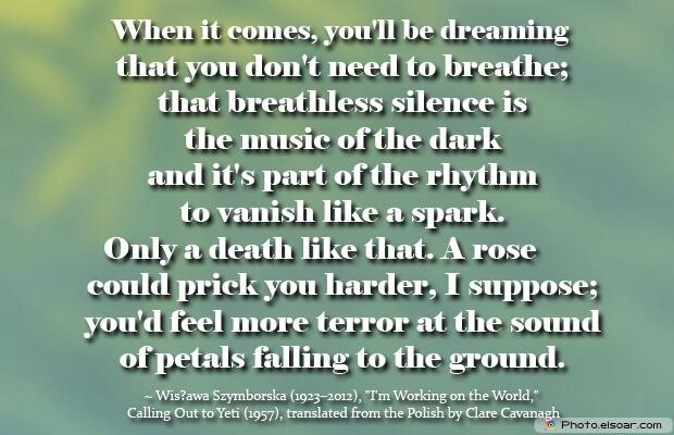 Wisława Szymborska, Death Quotes, Death Sayings, Quotes Images, Quotes About Death