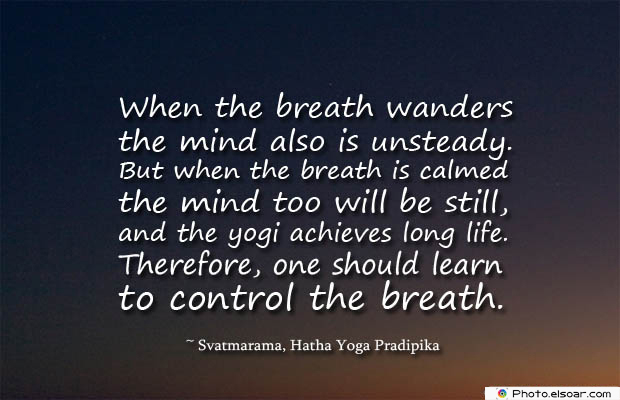 Breathing Quotes , When the breath wanders the mind