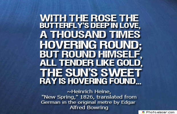 Butterflies Quotes , With the rose the butterfly's deep in love