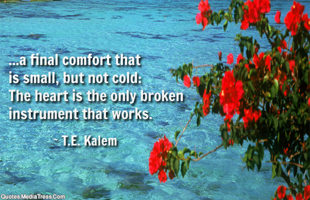 Short Quotes , a final comfort that is small, but not cold