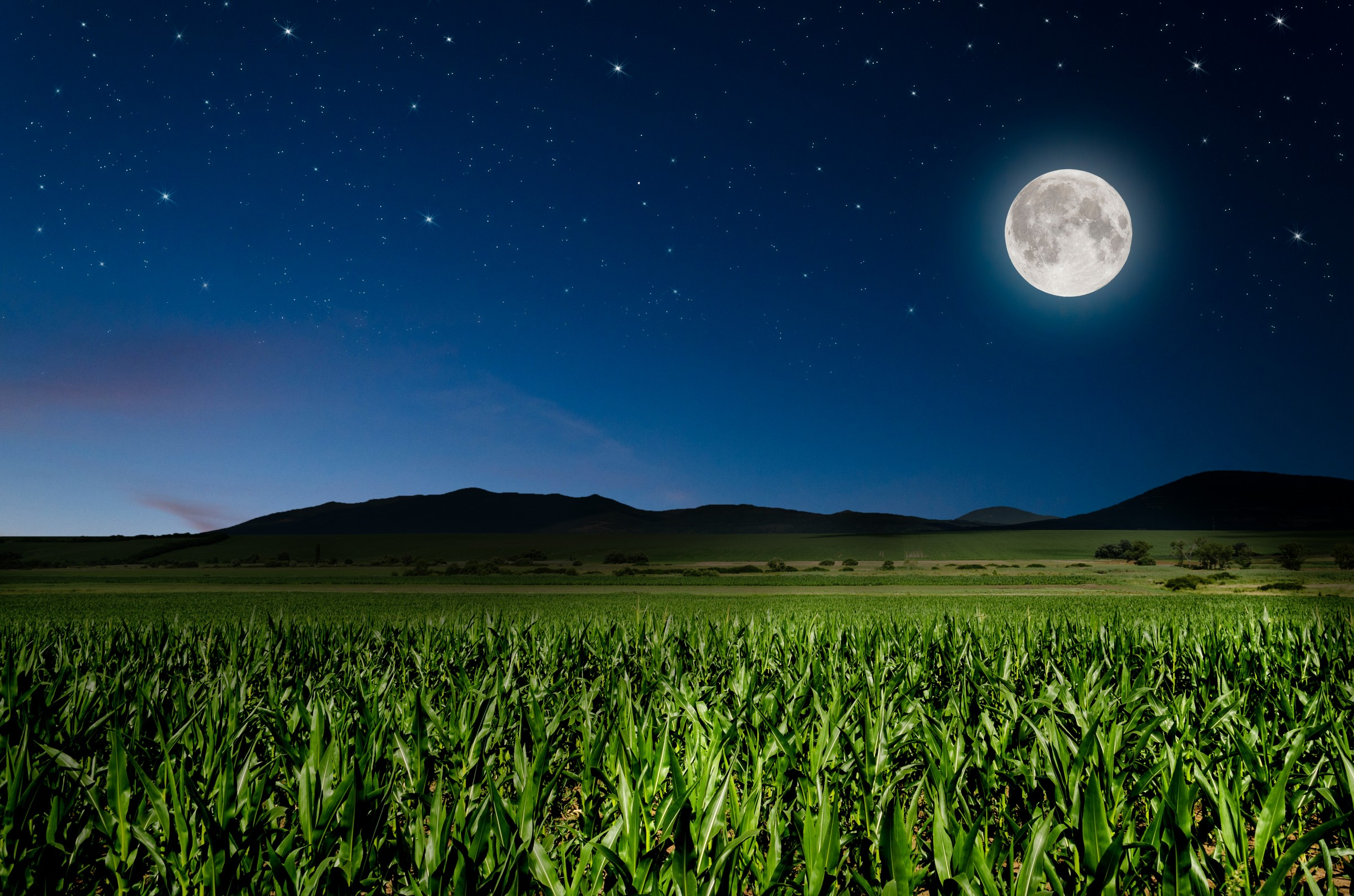 10 Tips For Better Night Landscape Photography | Contrastly